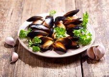 Platta av musslor med persilja Arkivbilder