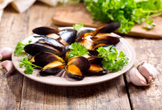 Platta av musslor med persilja Fotografering för Bildbyråer