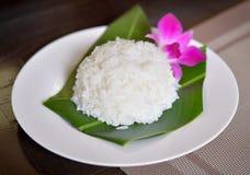 Platta av rice Royaltyfri Foto