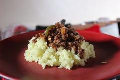 Platta av rice royaltyfria foton