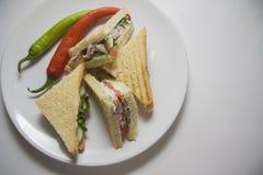 Platta av varma smörgåsar Royaltyfria Foton
