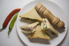 Platta av varma smörgåsar Royaltyfri Foto