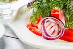 Platta för nya grönsaker med löken, tomaten och örter Fokus på lök- och makrobild Royaltyfria Bilder