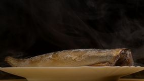 Platta med den djupfrysta makrillfisken på en svart bakgrund som det finns frostig friskhet och avdunstning från, närbilden, 4K arkivfilmer
