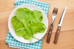 Platta med den nya sallad, kniven och gaffeln banta mat Fotografering för Bildbyråer
