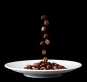 Platta med fallande kaffekorn Royaltyfri Foto