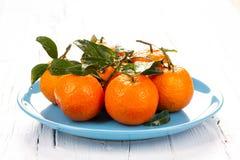 Platta med tangerin med gröna sidor royaltyfri fotografi