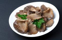 Plattan av det lagade mat örat plocka svamp på mörk bakgrund arkivbilder