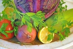 Plattan av mat för strikt vegetarian fotografering för bildbyråer