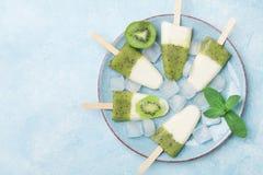 Platte der selbst gemachten fruchtigen Eiscreme oder des Eises am Stiel von der Draufsicht des Kiwismoothie und -joghurts Auffris stockfotografie