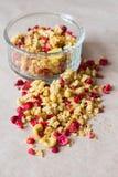 Platte des selbst gemachten muesli mit Corn-Flakes, gefriertrocknete Moosbeere, Acajoubaum, kandierte Frucht, Rosinen Stockfoto