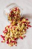 Platte des selbst gemachten muesli mit Corn-Flakes, gefriertrocknete Moosbeere, Acajoubaum, kandierte Frucht, Rosinen Stockbild