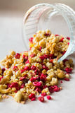Platte des selbst gemachten muesli mit Corn-Flakes, gefriertrocknete Moosbeere, Acajoubaum, kandierte Frucht, Rosinen Stockfotografie