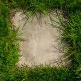 Platte gestaltet mit grünem Gras Stockbild