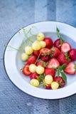 Platte mit Beeren auf einem Grau Lizenzfreie Stockfotos