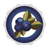 Platte mit drei Blaubeere und Blätter lizenzfreie abbildung