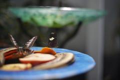 Platte mit Früchten und einem Schmetterling Stockfotos