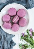 Platte mit Lavendel macarons Stockfotografie