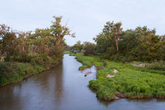 The Platte River at Dawn. The Platte River peacefully flows by lush grass and trees Royalty Free Stock Images