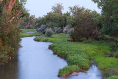 The Platte River at Dawn. The Platte River peacefully flows by lush grass and trees Stock Photos