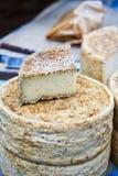 Platte und Kopf des Käses Lizenzfreie Stockfotografie