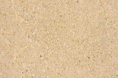 Platte von der Sandsteinnahaufnahme Stockfoto