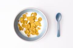 Platte von Frühstückskost aus Getreide und Löffel lizenzfreie stockfotos