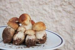 Platte von frischen Porcini-Pilzen Lizenzfreies Stockfoto