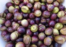 Platte von gebrochenen Oliven Lizenzfreie Stockfotos