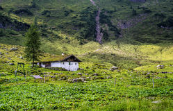 Platteland in Alpen, Oostenrijk royalty-vrije stock foto