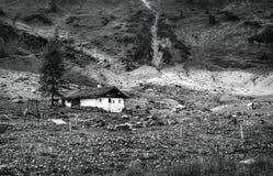 Platteland in Alpen, Oostenrijk stock fotografie