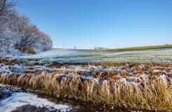 Platteland bevroren gebied Stock Afbeeldingen