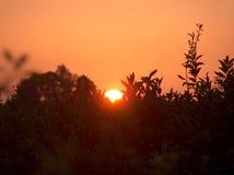 Platteland bij zonsondergang Royalty-vrije Stock Afbeeldingen