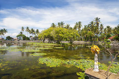 Platteland in Candidasa, Bali, Indonesië Stock Afbeeldingen