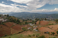 Platteland in de bergen Stock Foto's
