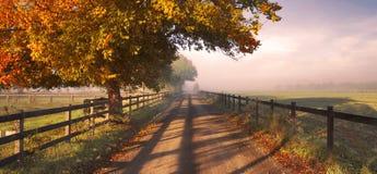 Platteland in de Herfst Stock Afbeeldingen
