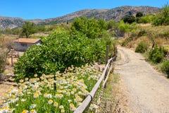 Platteland Het eiland van Kreta, Griekenland Stock Foto's