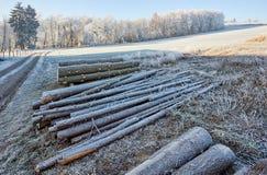 Platteland met bevroren logboeken en gebieden Stock Afbeeldingen