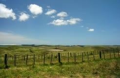 Platteland Nieuw Zeeland Royalty-vrije Stock Afbeelding