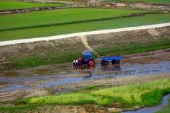 Platteland, Noord-Korea Stock Fotografie