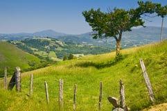 Platteland in Pays Basque, Frankrijk Stock Foto
