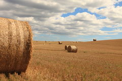 Platteland (Schotland, het UK) Stock Afbeeldingen