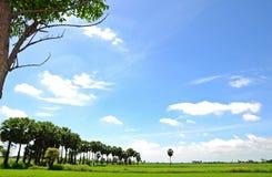 Platteland in Thailand Royalty-vrije Stock Foto