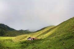 Platteland in Tirol royalty-vrije stock foto's