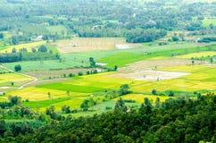 Platteland van Chiangrai-landschap royalty-vrije stock foto