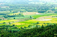 Platteland van Chiangrai-landschap stock foto