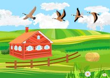 Platteland, vogels die, landbouwgrond groene heuvels vliegen royalty-vrije illustratie