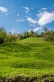 Plattelands groene heuvel stock afbeeldingen