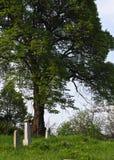 Plattelandsbegraafplaats royalty-vrije stock foto