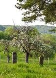 Plattelandsbegraafplaats stock foto's